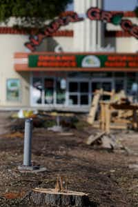 The trees were removed Monday at Casa Linda Plaza, billed as the third-oldest shopping center in the U.S.(Rose Baca/Staff Photographer)