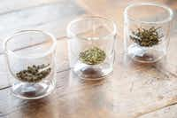 Glasses of loose-leaf tea at the tea tasting(Smiley N. Pool/Staff Photographer)