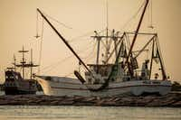 The Polly Anna shrimp boat follows the Red Dragon Pirate Cruise as both head out in late July from the Dennis Dryer Municipal Harbor in Port Aransas, Texas.(Smiley N. Pool/Staff Photographer)