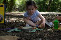 Emery Baumhardt, 3, plays outside at the Dallas Zoo's Wild Earth Preschool on Thursday.(Lawrence Jenkins/Special Contributor)