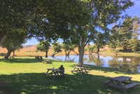 Visitors to Marin French Cheese Co. can picnic at a pond with a lovely view of the surrounding hills — a tradition since the 1950s.(Sheryl Jean/Special Contributor)
