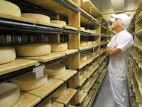 Aaron Langdon, head cheesemaker at Nicasio Valley Cheese Co., checks the aging progress of rounds of Nicasio Reserve, an Alpine-style cheese that ages for more than three months.(Sheryl Jean/Special Contributor)