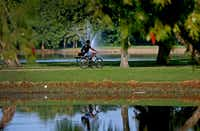 A man rides a bicycle at Towne Lake Recreation Area in McKinney.(Jae S. Lee/Staff Photographer)