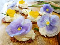 Pansies can be eaten raw in salads, or with cream cheese on hors d'oeuvres.(Daniel Cunningham/Special Contributor)