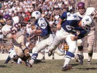 Don Perkins, No. 43, carries the ball for the Dallas Cowboys in a game in the Cotton Bowl in the early 1960s.(Dallas Cowboys Official Weekly)