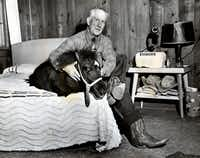 Oct. 30, 1949: PERUNA HAD A GOOD NIGHT'S SLEEP — Peruna was safe and comfortable before the game — Claude Fussell, manager of the Rendezvous Stables, saw to that.   Just to make sure the SMU mascot wouldn't be swiped by Texas students before the big game, Fussell put him up for the night in his apartment above the stables.(Jack Beers/The Dallas Morning News)