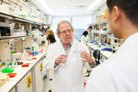"<p>Jim Allison of the University of Texas M.D. Anderson Cancer Center developed the groundbreaking cancer treatment known as ""immune checkpoint therapy"" along with fellow Nobel Prize winner Tasuku Honjo of Kyoto University.</p>(&nbsp;/&nbsp;)"