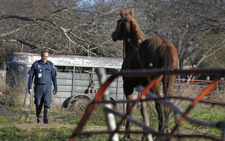 Abused Animals Have New Defenders In 2 Dallas Police Detectives But