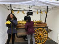 """Amazonians"" giving away free bananas from the daily banana stand.(Dave Lieber/Staff)"