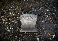 <p>A headstone in the historic Collinsworth Cemetery in Plano, where many victims of a smallpox epidemic were buried in 1895.</p>(Rose Baca/Staff Photographer)