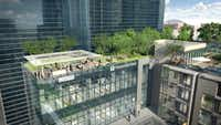 Transwestern is moving its Dallas regional office to the Union project at Cedar Springs Road and Field Street.(Transwestern)