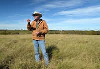 Jon Taggart holds up a sprig of silver bluestem in front of a monoculture field of kleingrass during at tour at his Burgundy Pasture Beef Ranch in Grandview. The bluestem tells him the pasture is getting healthier.(Alfonso Cevola/Special Contributor)