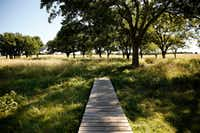 A bridge leads to the meadow trails at Oak Point Park and Nature Preserve in Plano.(Rose Baca/Staff Photographer)