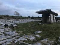 The Poulnabrone dolmen in County Clare is a  portal tomb  built between 5,000 and 3,000 B.C. At least 33 people were buried here, including a newborn baby that was interred just outside the entrance.(Lauren McGaughy/Staff)