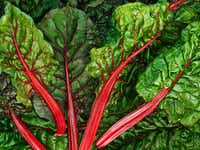'Chard' by Nathan Myhrvold of Modernist Cuisine at Modernist Cuisine Gallery in Las Vegas(Nathan Myhrvold/Modernist Cuisine Gallery, LLC)