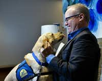 Jim Hinton meets a Labrador named Rivers from Canine Companions for Independence at the Baylor Scott & White Health administrative offices in Dallas.(Ben Torres/Special Contributor)