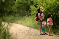 Daphne Pee and her children Ada Stuyvenberg, 7, and Ian Stuyvenberg, 2, take a stop along Cottonwood Trail at Lake Lewisville Environmental Learning Area in June.(Rose Baca/Staff Photographer)