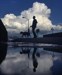 With rain clouds building to the east of downtown Dallas, Zachary Adler takes his boxer-mix Archie for a walk, Wednesday, September 12. Rain was back in the forecast that weekend as a tropical disturbance formed in the Gulf of Mexico.(Tom Fox/Staff Photographer)