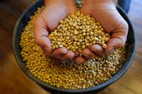 Any inkling of improving trade relations between the U.S. and China could boost soybean prices.(Charlie Neibergall/AP)
