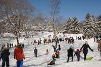 Sledders flock to Central Park to take advantage of winter snowfall in New York City.(Central Park Conservancy)