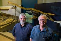 "<p><span style=""font-size: 1em; background-color: transparent;"">Michael Polcyn (left), senior research fellow at SMU, and Louis Jacobs, professor emeritus of earth science and president of ISEM at SMU, pose for a photo in their ""Sea Monsters"" exhibit in October at the Smithsonian National Museum of Natural History in Washington, D.C. The Smithsonian is closed due to the government shutdown.</span></p>(Ashley Landis/Staff Photographer)"