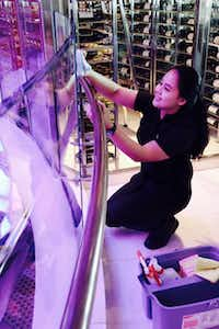 <p>Yulia Asriyani cleans glass in the ship's atrium. She worked in a hotel in her native Indonesia before going through five weeks at the cruise line's academy in Jakarta.<br><br></p>(Robert N. Jenkins/Special Contributor)