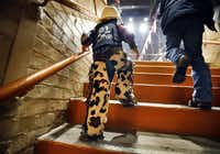 In full rodeo regalia, two-year-old Austin Curtis of Fort Worth climbs the steep steps to the seating bowl of Will Rogers Memorial Coliseum.(Tom Fox/Staff Photographer)