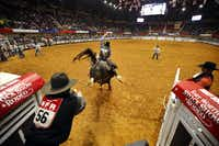 Saddle bronc riding horse Sabotage tries to buck contestant Josh Parker, of North Wilkesboro, N.C., from his back during an evening performance at Will Rogers Memorial Coliseum, Wednesday, January 30, 2019 at the Fort Worth Stock Show and Rodeo in Fort Worth.(Tom Fox/Staff Photographer)
