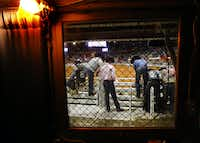 Bull riders on the bucking chutes are seen through the fence protected windows of the lower sound booth of Will Rogers Memorial Coliseum at the Fort Worth Stock Show and Rodeo in Fort Worth, Wednesday, January 30, 2019.(Tom Fox/Staff Photographer)