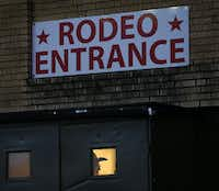 An usher is seen through the rodeo entrance doors of Will Rogers Memorial Coliseum at the Fort Worth Stock Show and Rodeo in Fort Worth, Wednesday, January 30, 2019.(Tom Fox/Staff Photographer)