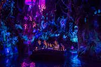 The Na'vi River Journey floats past animated creatures, plants and a shaman at Pandora — The World of Avatar. (Steven Diaz/Walt Disney World )