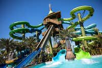 Volcano Bay, Universal's mega-water park, combines aquatic thrills, fantasy island settings and line-minimizing technology to maximize playtime. (Willie J. Allen Jr./Universal Orlando)