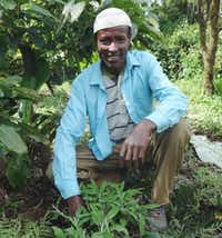 Hussen Seid grows sage on his farm in Ethiopia for Green Path Food.(Green Path Food)