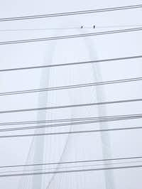 The Margaret Hunt Hill Bridge was partly obscured by fog, as seen through electric transmission wires crossing the Trinity River in Dallas, on the morning of Feb. 27, 2019.(Rose Baca/Staff Photographer)