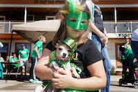 Leonia Hopper and her dog Rally attended the St. Paddy's Pickle Pet Parade in Mansfield in 2016.  (Lawrence Jenkins/Special Contributor)(Lawrence Jenkins/Special Contributor)