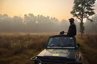 A wildlife spotter from the local Baiga tribe scans the horizon in Kanha National Park. (Mark Johanson/Chicago Tribune)