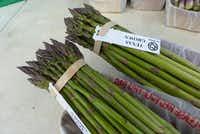 B&G s Garden near Poolville, famous for its asparagus, brought its first cuttings to the Cowtown Farmers Market last Saturday. Greg Johnson expects to continue harvesting for the next eight weeks.(Kim Pierce/Special Contributor)