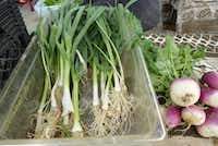 Wolfsong Farm in Forney harvested leeks and turnips at White Rock Farmers Market.(Kim Pierce/Special Contributor)