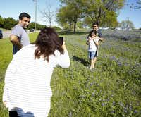 Seems and Salmon Kerai take photos of their children Sinan and Safiya in a bluebonnet field in a median on W. Bethany Drive in Allen, Texas on April 14, 2019.(Brian Elledge/Staff Photographer)