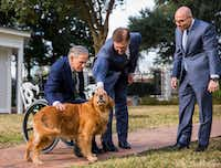 One of Gov. Greg Abbott's two golden retrievers, Pancake, hammed it up for a news conference at the Governor's Mansion in Austin on the second day of this year's legislative session. Abbott (left) and Lt. Gov. Dan Patrick petted Pancake while newly installed Speaker Dennis Bonnen watched.(Ashley Landis/Staff Photographer)