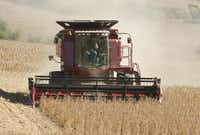 Lemar Vogler of Louisville, Neb., harvested soy beans in a field near South Bend, Neb., in 2009. Commodities trading may seem appealing, but the Fool says the risk isn't worth it for most people.(File Photo/The Associated Press)