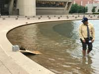 Dallas Animal Services director Ed Jamison spent his late Tuesday afternoon making sure that a duck and her 12 babies were out of harm's way at Dallas City Hall's reflecting pool.(Corbin Rubinson/City of Dallas)