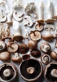 A variety of fresh mushrooms(Rose Baca/Staff Photographer)