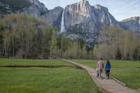 Hikers enjoy a spring stroll on a boardwalk in Yosemite Valley. (Keith Walklet/Yosemite Conservancy)