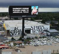 Amarillo resident Hayden Pedigo recently put up billboards around town asking Hollywood director Harmony Korine to come visit.(Alex Fairbanks/Special Contributor )