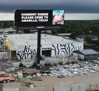Amarillo resident Hayden Pedigo recently put up billboards around town asking Hollywood director Harmony Korine to come visit.(Alex Fairbanks/Special Contributor)