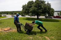 Isidro Medrano and Eli Benavides, 12, work to remove a tree near White Rock Lake in Dallas on Monday, June 10, 2019. Strong storms produced widespread damage throughout Dallas-Fort Worth, causing more than 200,000 people to lose power.(Shaban Athuman/Staff Photographer)