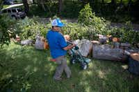 Isidro Medrano works to remove a tree near White Rock Lake in Dallas on Monday, June 10, 2019. Strong storms produced widespread damage throughout Dallas-Fort Worth, causing more than 200,000 people to lose power.(Shaban Athuman/Staff Photographer)