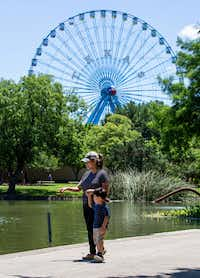 Under the Texas Star Ferris Wheel, Veronica Zubia and her son Arturo look at the number of turtles in Leonhardt Lagoon at the first Fair Park Field Day of the summer on June 7.(Kara Dry/Special Contributor)