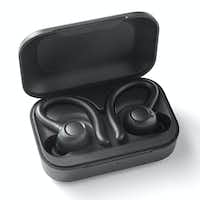 The Blackweb True Wireless Bluetooth Earbuds(Walmart)